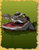publishing gators
